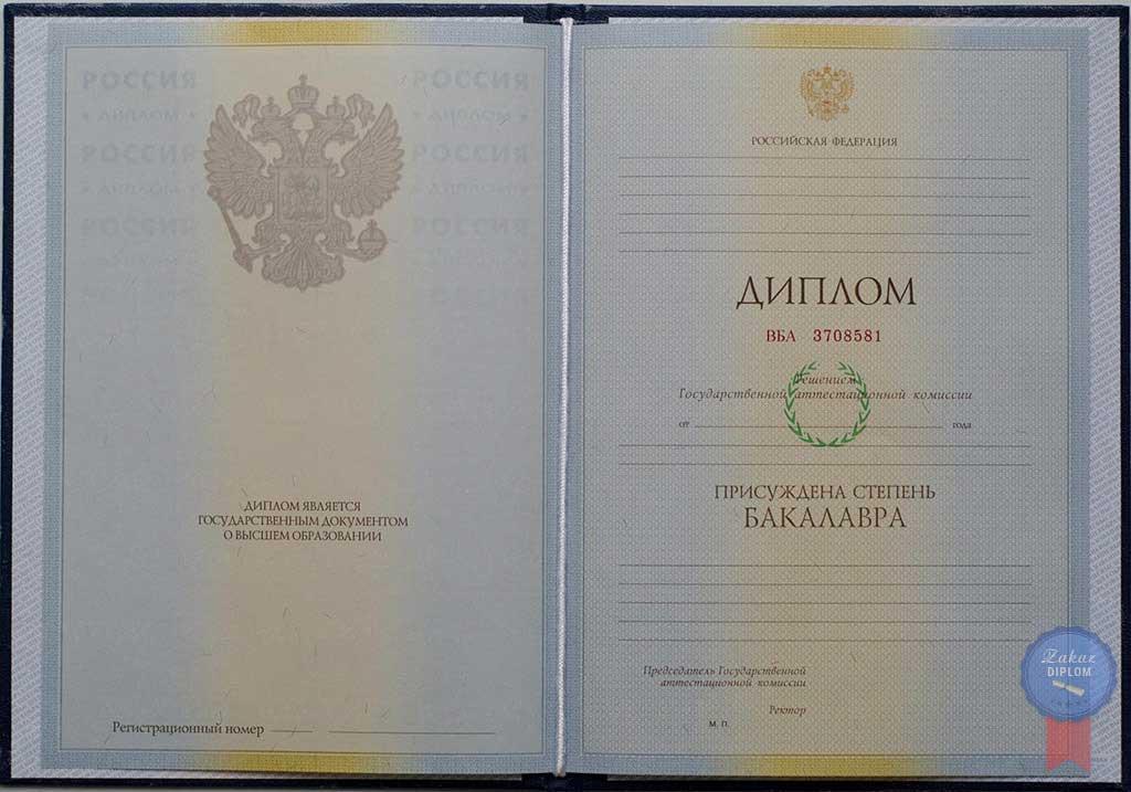 Диплом бакалавра 2004 — 2009 год