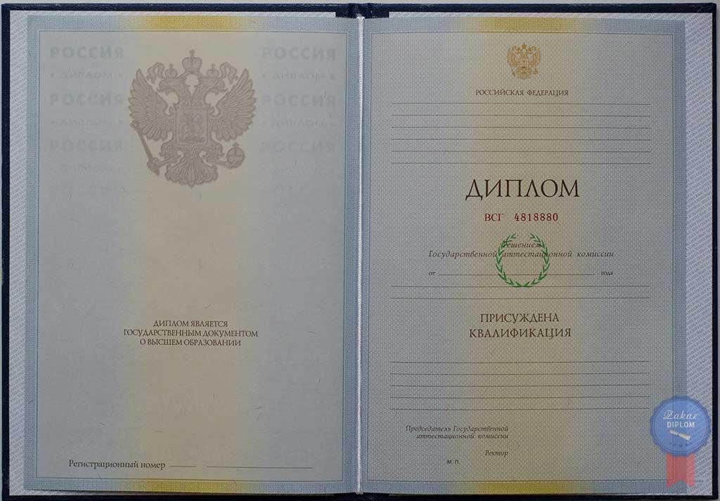 Диплом института 2004 — 2009 год